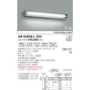 AR45858L 非常灯  LED(昼白色) コイズミ照明 (KA) 照明器具|akariyasan