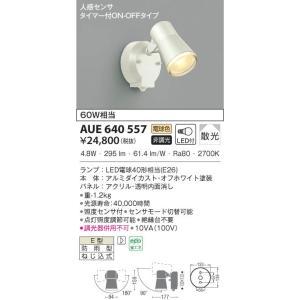 品番:AUE640557 品名:アウトドアスポットライト 価格:24800円 メインスペック  器具...