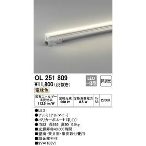 OL251809 室内用間接照明 LED(電球色・2700K) オーデリック 照明器具【RCP】|akariyasan