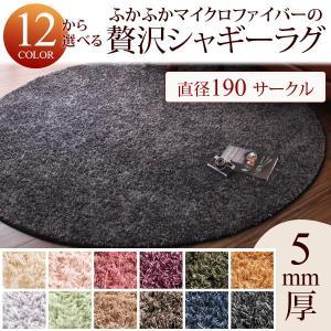 マイクロファイバー シャギーラグ 直径190 円形|akaya