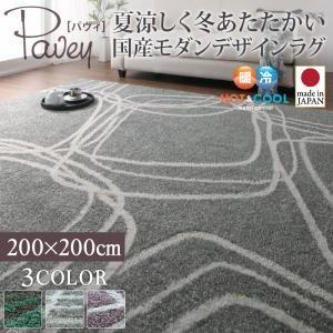 カーペット 国産 モダンデザイン ラグ 200×200cm|akaya