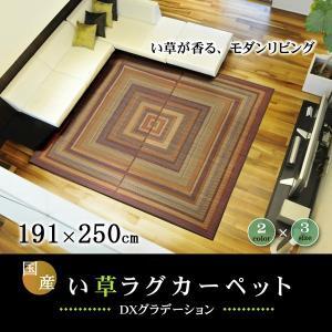 い草 ラグ カーペット 日本製 袋三重織 191×250cm 裏地付き|akaya
