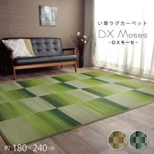 い草ラグカーペット い草カーペット 約180×240cm シンプル コンパクト 畳める 不織布 裏加工あり|akaya