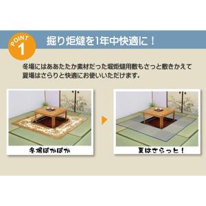 掘りごたつ用カーペット い草ラグ 191×250cm (中抜き90×120cm) akaya 02