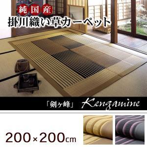 掛川織い草ラグ モダン 純国産 200×200cm|akaya