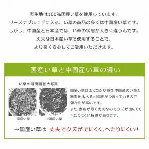 い草マット 寝ござ い草 シーツ 国産 敷パッド 70×120cm|akaya|03