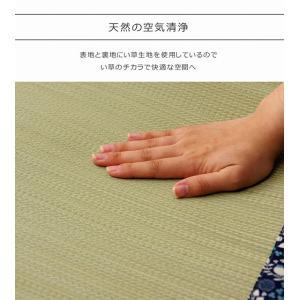 い草マット 寝ござ い草 シーツ 国産 敷パッド 70×120cm|akaya|07