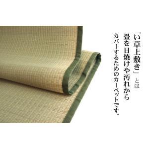 い草 上敷き い草 カーペット 本間8畳 382×382 ござ 純国産|akaya|02