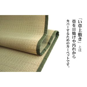 い草 上敷き い草 カーペット 江戸間2畳 176×176 ござ 純国産|akaya|02