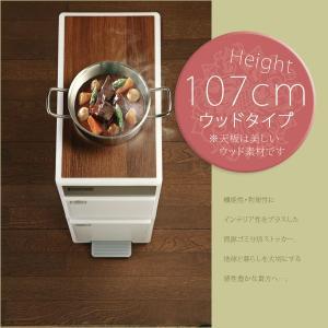 ごみ箱 分別 ゴミ箱 ダストボックス キッチン 高さ107cm 木天板付 akaya