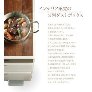 ごみ箱 分別 ゴミ箱 ダストボックス キッチン 高さ107cm 木天板付 akaya 02