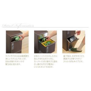 ごみ箱 分別 ゴミ箱 ダストボックス キッチン 高さ107cm 木天板付 akaya 03