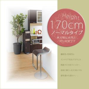 ごみ箱 分別 ゴミ箱 ダストボックス キッチン 高さ170cm|akaya