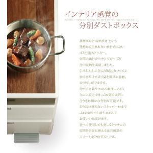 ごみ箱 分別 ゴミ箱 ダストボックス キッチン 高さ170cm|akaya|02