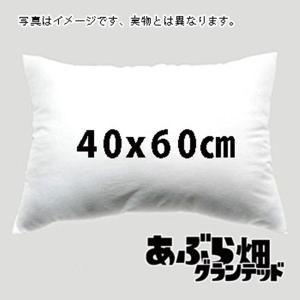 「中身」抱き枕クッションカバーの「中身40x60」 / あぶら畑グランテッド 発売日2018年06月18日 AKBH|akhb
