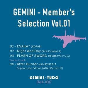 GEMINI − Member's Selection Vol.01 / ジェミニ誘導|akhb