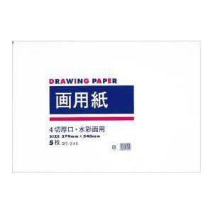 四ッ切画用紙 5枚入 ヨウ-245|akibaoo