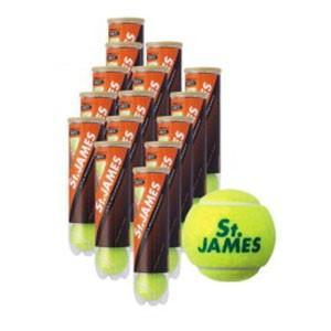 テニスボール St.JAMES セント・ジェームス ケース 4球X15缶=60球 硬式テニス ボール...