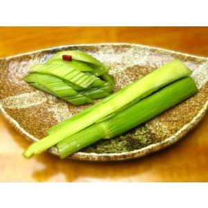 セロリー漬  (増澤醸造株式会社)|akindo