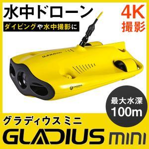 CHASING 水中ドローン GLADIUS MINI グラディウス ミニ 100m 水中カメラ 海中カメラ 動画 撮影 潜水 akindoyamaru