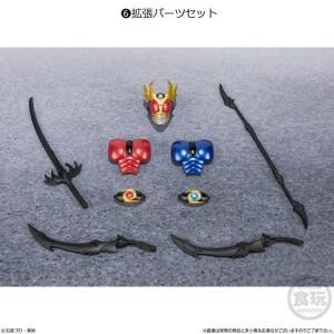 全6種フルセット (フルコンプ) [食玩 SHODO-X 仮面ライダー6] バンダイ|akism|06