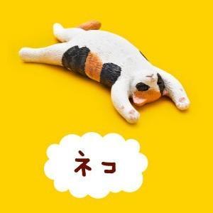 ネコ 【 ガチャポン パンダの穴 Zoo Zoo Zoo 第1弾 もうしら寝 】 タカラトミーアーツ akism
