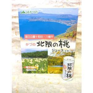 JAかづの  北限の桃ジュース(加糖)箱30本入り|akita-bussan
