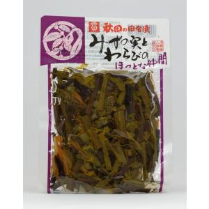 浅舞婦人漬物研究会 秋田の田舎漬 みずの実とわらびのほっとな仲間 akita-bussan