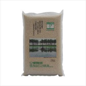 無農薬 あきたこまち 5kg(玄米) 真空パック 大潟村 提携米[黒瀬農舎]|akitagokoro