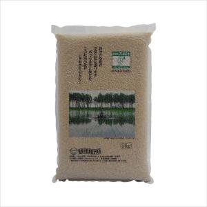 減農薬 あきたこまち 5kg(玄米) 真空パック 大潟村 提携米[黒瀬農舎]|akitagokoro