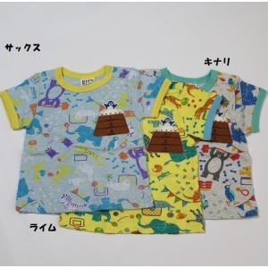 子供服 男の子 半袖 動物スポーツ柄Tシャツ ビッツ BIT'Z 90cm 110cm 55%OFF メール便OK FS83|akitaoutlet