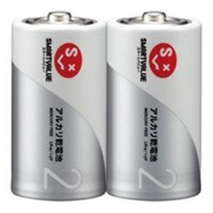ジョインテックス アルカリ乾電池 単2×100本 N122J2P50 | 家電|aks