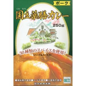 国立薬膳カレーポーク 10個セット|akstore