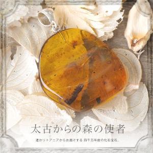 虫入り 琥珀ペンダント 送料無料 シルバー Silver925 コレクションランク チェーン別売 musi226|akubixy