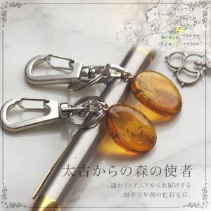 虫入り キノコバエ 琥珀ピアス 送料無料 シルバー Silver925 コレクションランク musi240|akubixy