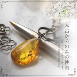 虫入り 琥珀ペンダント 送料無料 シルバー Silver925 コレクションランク チェーン別売 musi246|akubixy