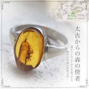 癒しの宝石 天然琥珀 虫入り琥珀リング・指輪 送料無料 パワーストーン 天然石 お守り シルバー Silver925 コレクションランク musi373|akubixy
