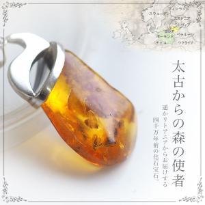 癒しの宝石 天然琥珀 虫入り琥珀ネックレス パワーストーン 天然石 送料無料 シルバー Silver925 コレクションランク チェーン別売り musi376|akubixy
