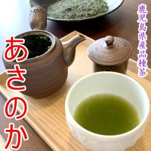 茶 ほんのり甘い 水出し茶に あまり見かけない お茶 鹿児島茶 希少 あさのか 鹿児島 品種茶 100g|akutsu-chaho