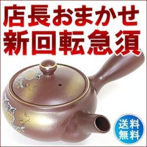 店長おまかせ  急須 お茶 セット オリジナルブレンド茶付き 着いてすぐにおいしいお茶 何が来るかお...