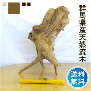 流木 販売 群馬 天然木 インテリア 中型 ryuboku-001|akutsu-chaho