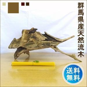 流木 販売 群馬 天然木 インテリア 中型 ryuboku-002|akutsu-chaho