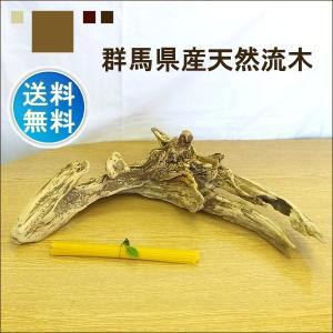 流木 販売 群馬 天然木 インテリア 中型 ryuboku-006|akutsu-chaho