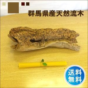 流木 販売 群馬 天然木 インテリア 中型 ryuboku-008|akutsu-chaho