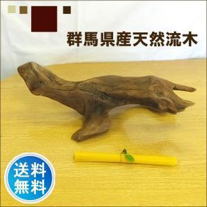 流木 販売 群馬 天然木 インテリア 中型 ryuboku-009|akutsu-chaho