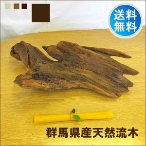 流木 販売 群馬 天然木 インテリア 中型 クリアニス加工 ryuboku-011|akutsu-chaho