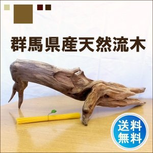 流木 販売 群馬 天然木 インテリア 大型  ryuboku-013|akutsu-chaho