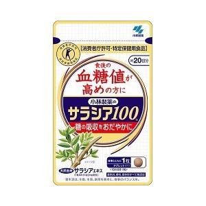 小林製薬のサラシア100 60粒の関連商品4