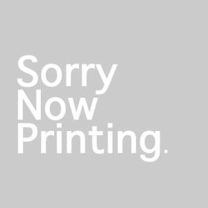 HGBD:R ガンダムビルドダイバーズRe:RISE ガンダムアニマリゼ 1/144スケール 色分け済みプラモデルの商品画像|ナビ