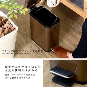 ゴミ箱 ごみ箱 ダストボックス ごみばこ フタ付き ペダル式 alberoshop 11